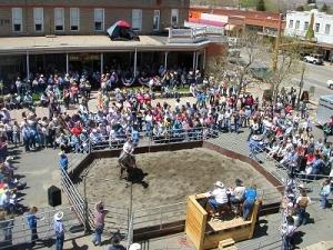 Annual Buffalo Bill Top Notch Horse Sale