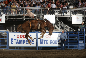 Countdown to the Cody Nite Rodeo