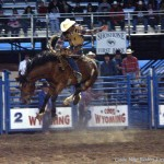 The Cody Stampede and the Cody Nite Rodeo 2