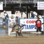The Cody Stampede and the Cody Nite Rodeo
