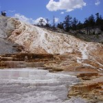 Top 11 Things To See In Yellowstone National Park 5