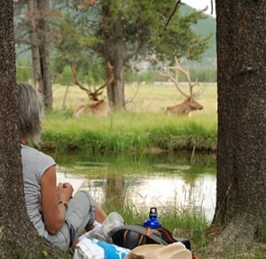 Woman watching elk across river