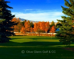 Olive Glenn Golf and Country Club