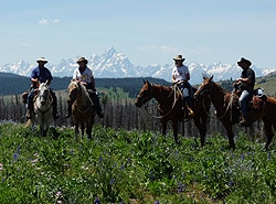 Boulder Basin Outfitters – Trail Rides
