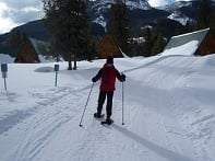 Individual snowshoeing on a winter trail