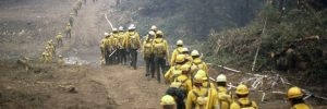 Firefighters dressed in yellow help fight the fires of 1988