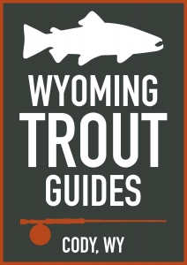 Wyoming Trout Guides Fly Shop 1