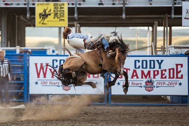A cowboy rides a horse at the Cody Nite Rodeo