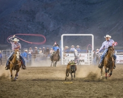 Cowboys performing at the rodeo at Cody