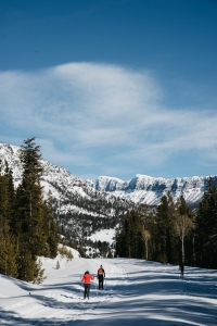 Sweet Silence and Where to Find it in Cody Yellowstone this Winter