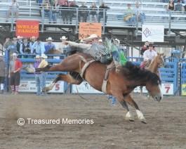 Trapper Stampede Rodeo