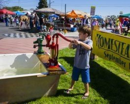 Homesteader Days Festival