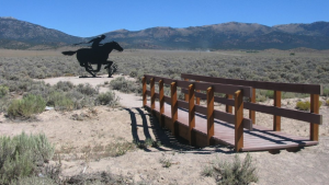 125 Pounds of Grit: Buffalo Bill and the Pony Express
