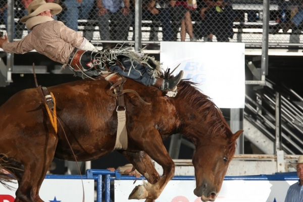 Rodeo's in Cody