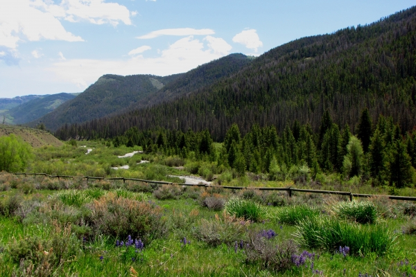 The Breathtaking Wood River Valley on the Bighorn Basin Loop