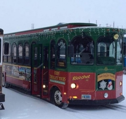 Holly Jolly Trolley - Christmas Lights Tour 1