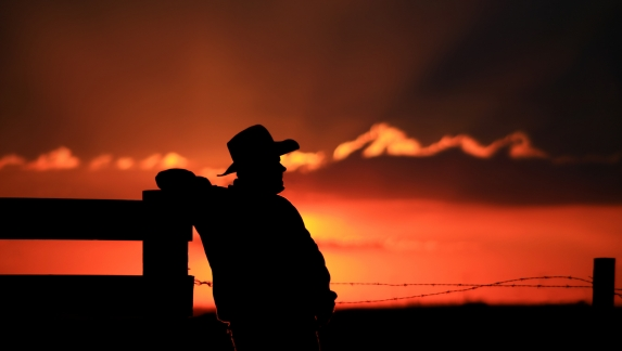 Cowboy Silhoutette