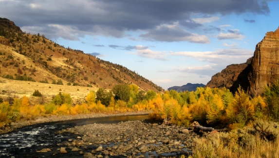 Fall colors in North Fork Shoshone river, near Cody, Wyoming