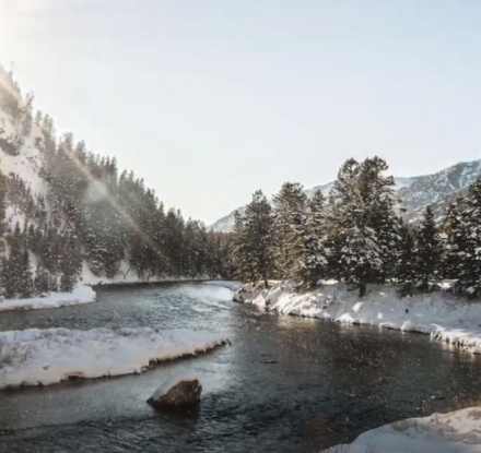 Winter scenery from video