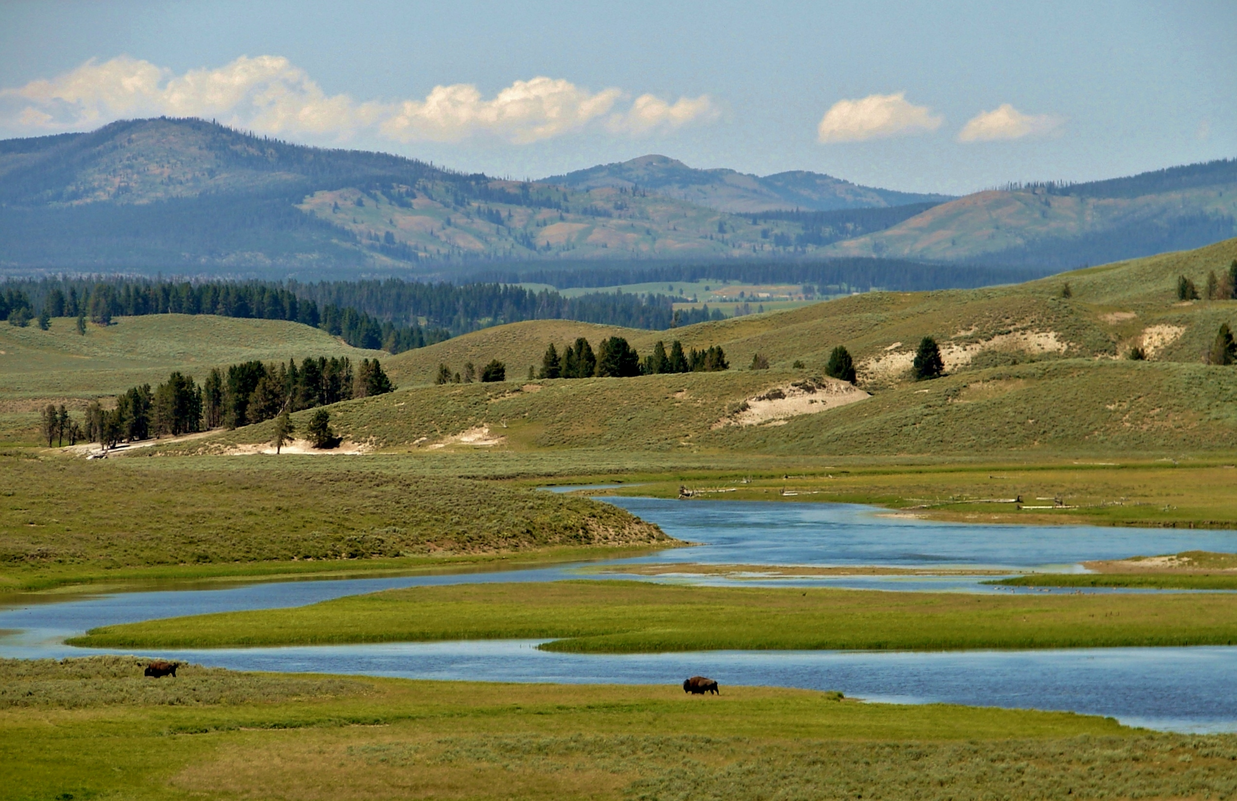 Yellowstone National Park Cody Yellowstone