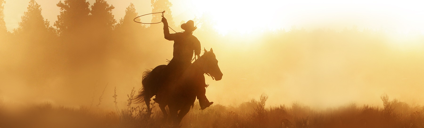 what-to-do-day-ranches-hero