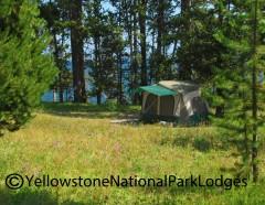 Bridge Bay Campground WM