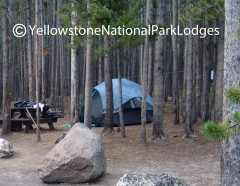 Canyon Campground WM