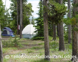 Grant Village Campground WM