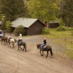 Trail ride passing a cabin