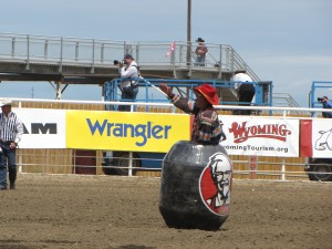 Bull fighters often use plastic barrels to protect themselves from raging bulls in the rodeo arena.