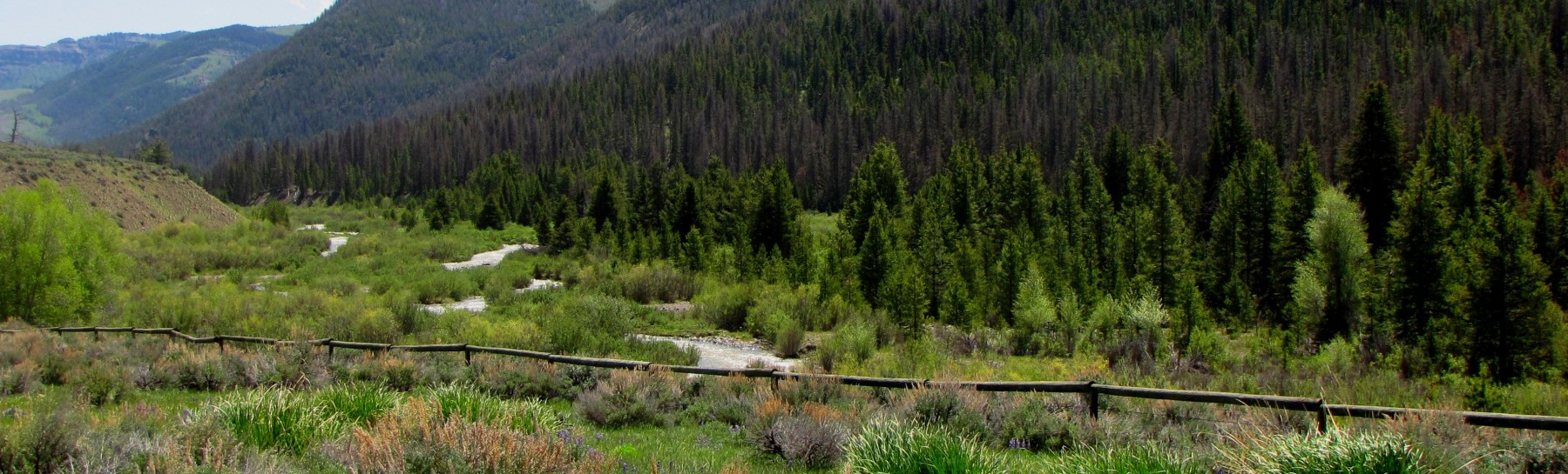 Wood River Valley 6-26-11