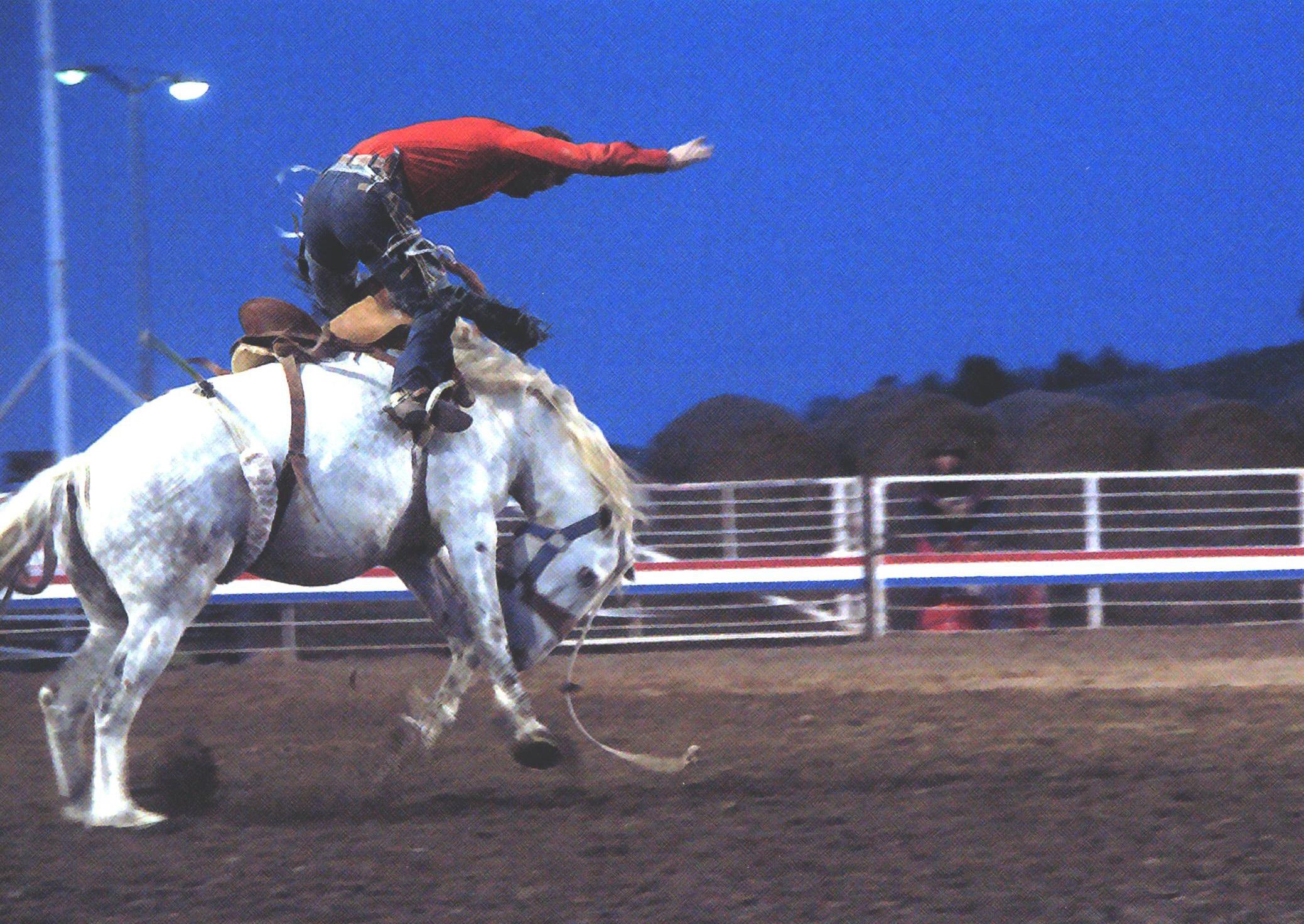 Inner Cowboy Cody Yellowstone