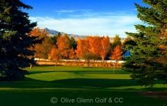 Olive Glenn (Rebecca Slomski Photo Credit Olive Glenn Golf & CC) wm