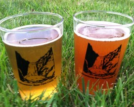 Yellowstone Beer Fest (Trent Cole)