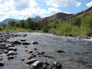 Miles of fishing streams and rivers make Cody an angler's paradise