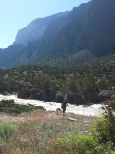 The Cody area provides many opportunities to take a scenic hike