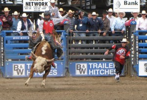 The Cody Nite Rodeo is thrilling for spectators