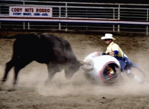 The Rodeo Clown is actually a bullfighter and protects competitors from the bulls