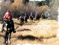 Enjoy the beauty of Yellowstone Country on horseback
