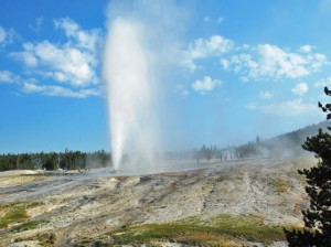 Yellowstone, a national treasure, is managed by the NPS