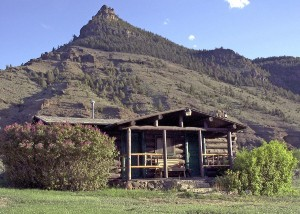 Cabin houses for guests.