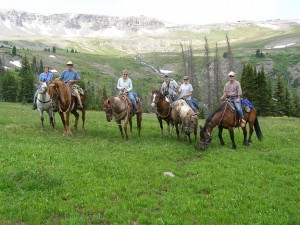 Horseback riding is a popular activity.