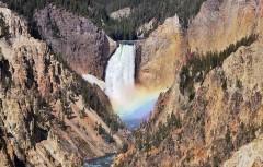 Experience Yellowstone