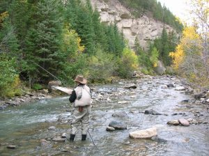 Fall fishing in Cody/Yellowstone Country