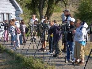 Visitors to Yellowstone National Park use spotting scopes to safely view wildlife.