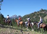 A group on horseback follows a trail in Cody/Yellowstone Country.
