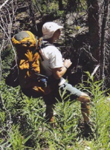 A hiker with a backpack walk through the wilderness of Cody/Yellowstone Country.