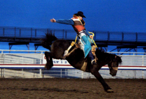 A cowboy rides a bucking horse in the evening