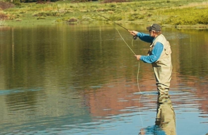 A man goes fly fishing in Cody Yellowstone