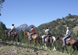 A group of four travel by horseback in Cody Yellowstone
